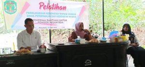 Santri di Luwu Utara Dilatih Beternak Ayam Kampung