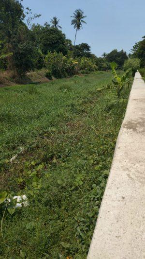 Kanal Dipenuhi Lumpur, Warga Desa Taeng Minta Balai Pompengang Lakukan Pengerukan