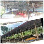 "Kandang Ayam Rp190 Juta Milik DPRD Bone Tak Rampung, Kontraktor ""Mahal Kayunya"""
